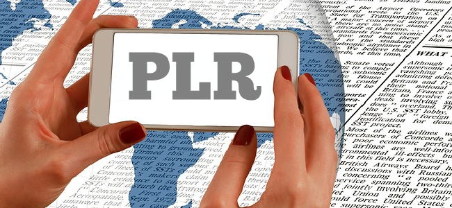 benefit from plr articles